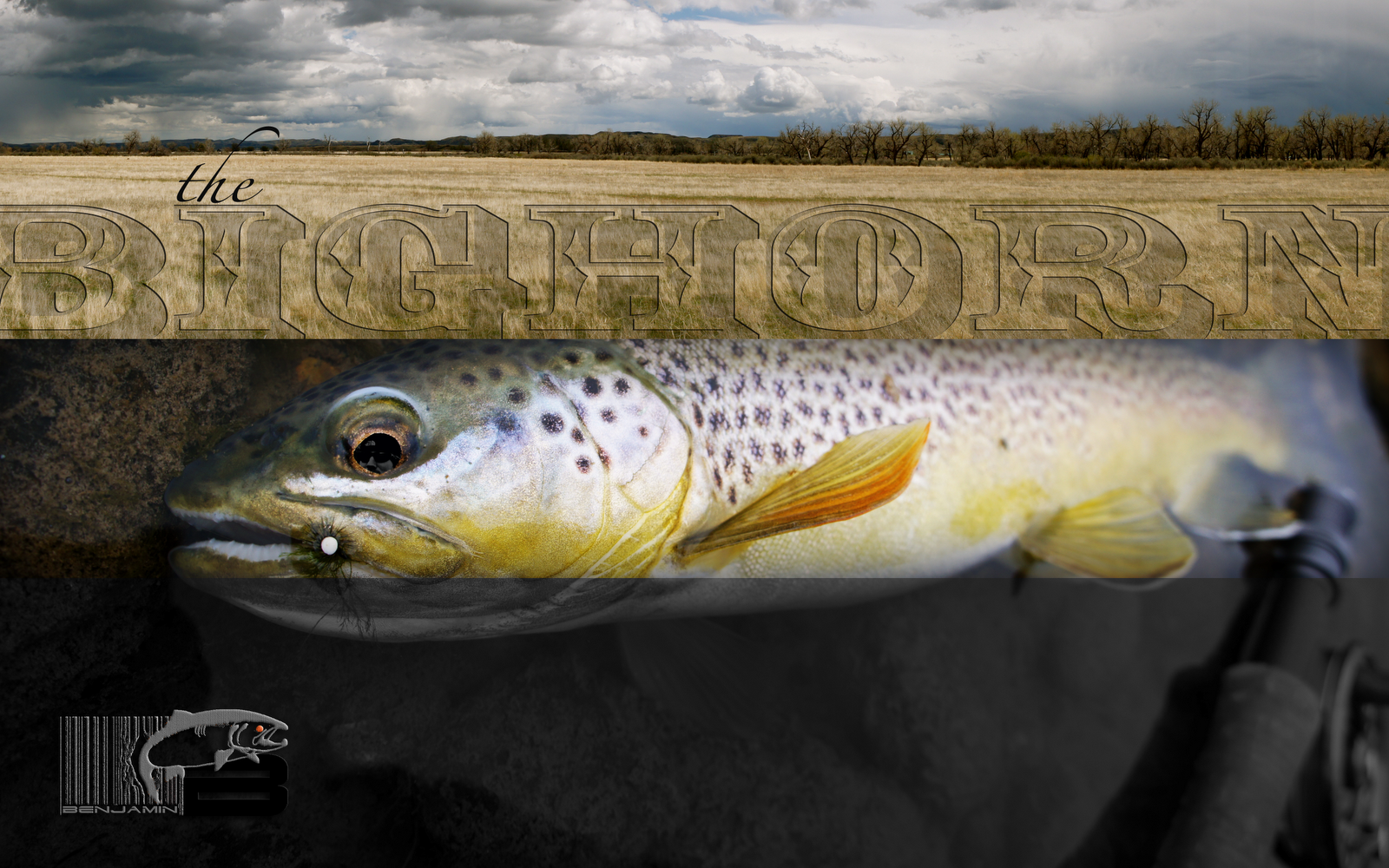 trout fly fishing wallpaper - photo #43