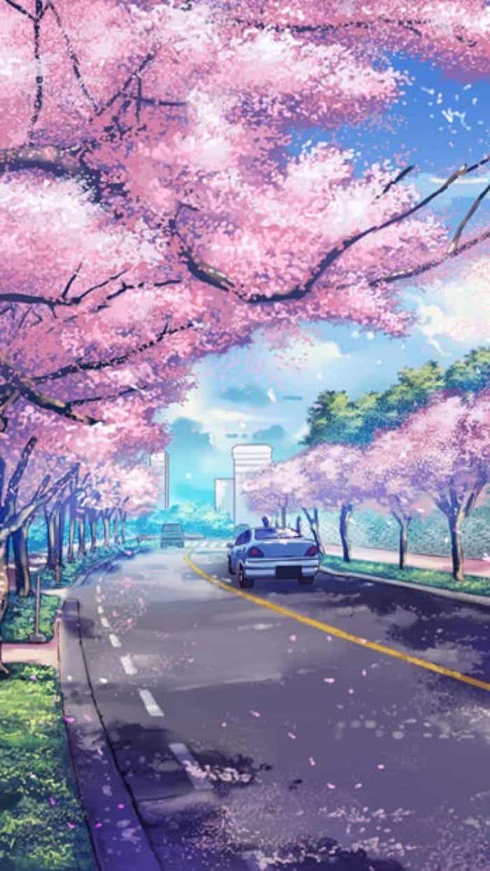1001 spring wallpaper images for your phone and desktop computer 700x1244