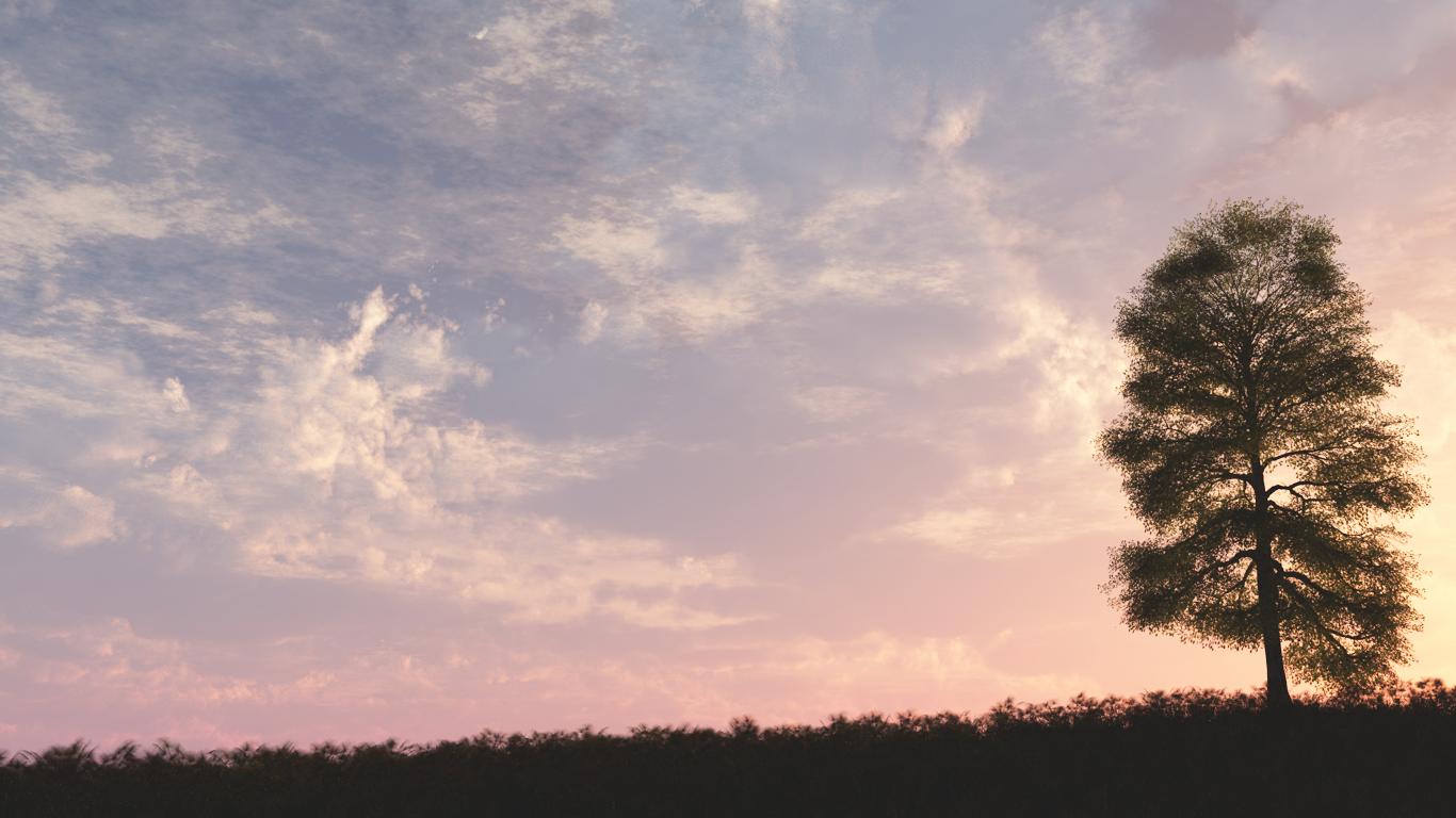 Pink sunset wallpaper by Vuenick on deviantART 1366x768