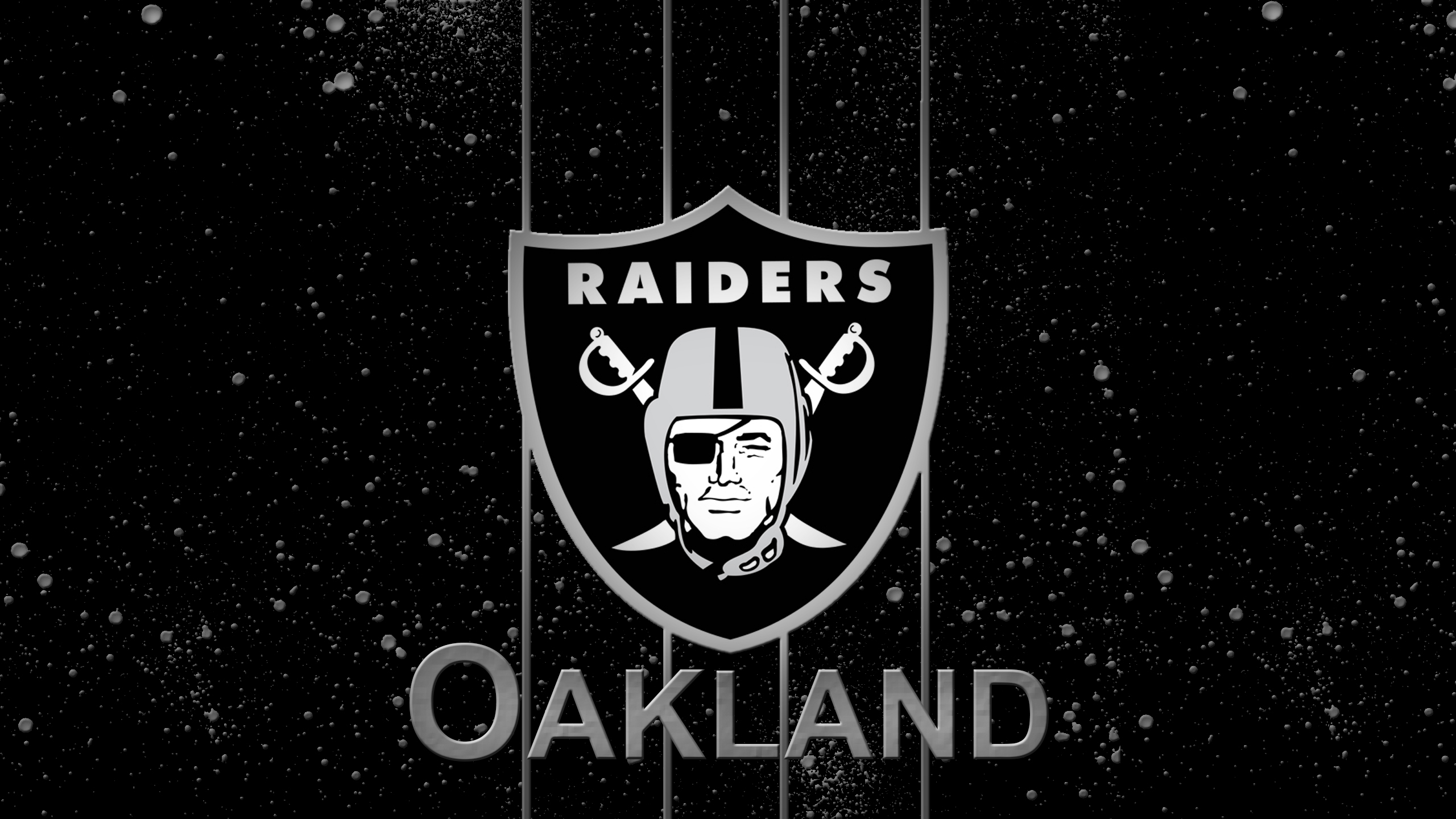 Oakland Raiders Logo wallpaper   1231589 2560x1440