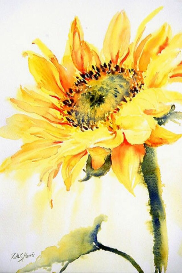 iPhone Wallpaper   Watercolors tjn By media cache ak0pinimgcom 640x960