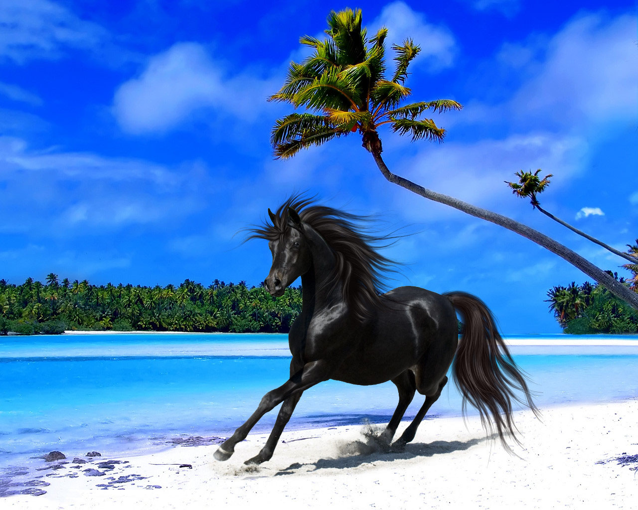 tropical island wallpapers Archives   WordPress Aisle 1280x1024
