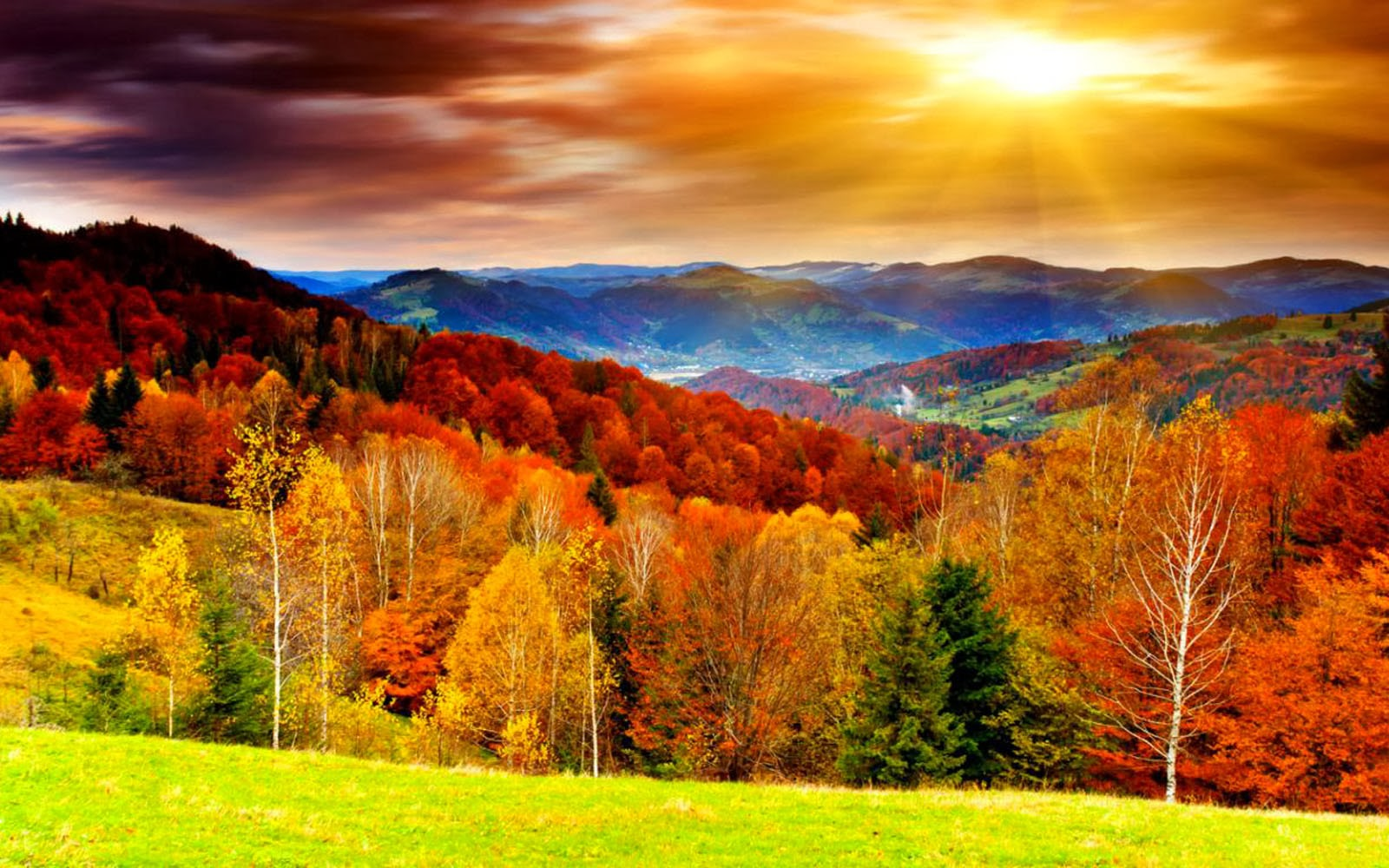 art pictures Autumn Scenery Desktop Wallpapers 1600x1000