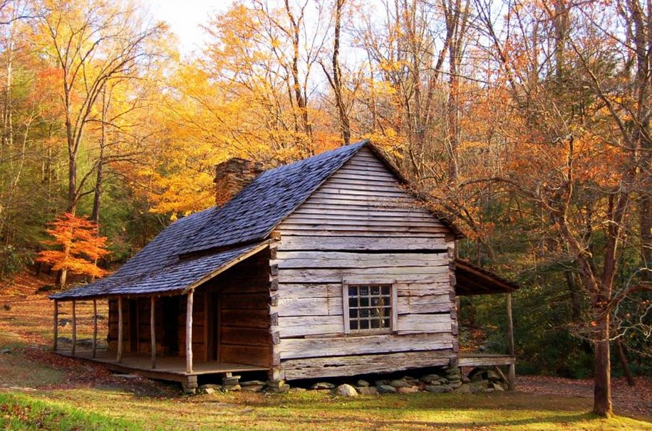 Olde Cabin in the Woods wallpaper   ForWallpapercom 915x606