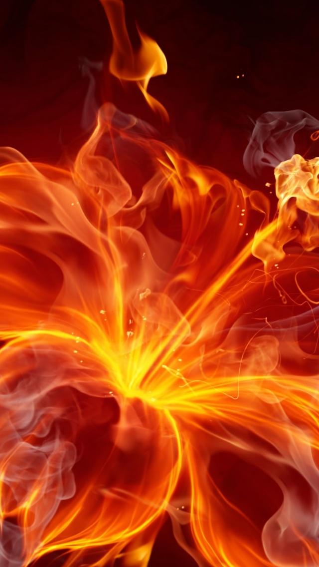 640x1136 Fire Hibiscus Iphone 5 wallpaper 640x1136