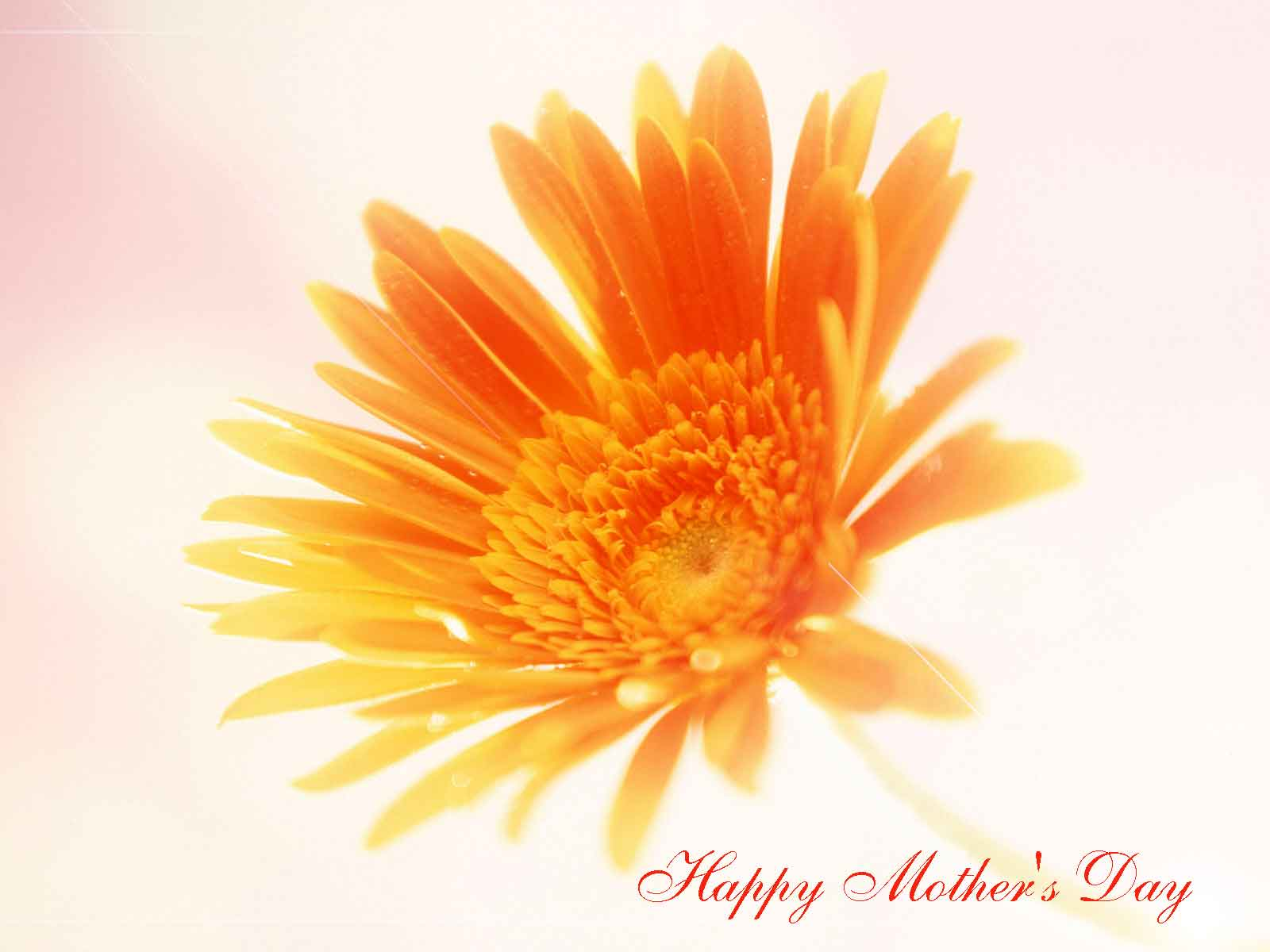 Happy Mothers Day Cool Wallpapers Cool Christian Wallpapers 1600x1200