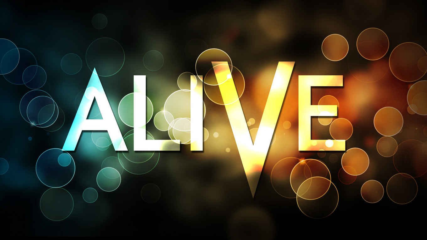 Alive wallpapers Anime HQ Alive pictures 4K Wallpapers 1360x765