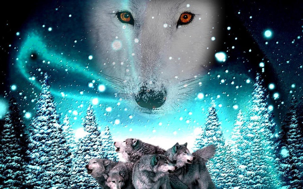 картинки и анимация с волками цветок