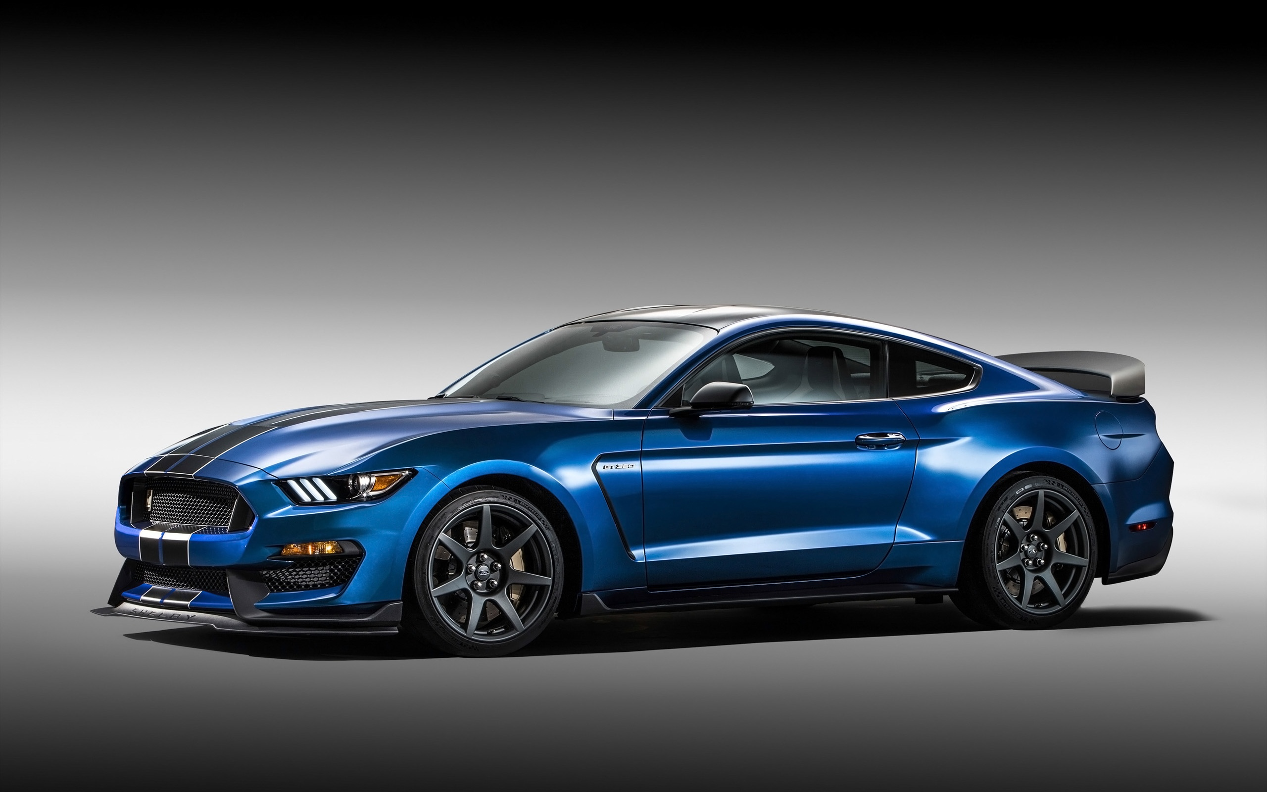 2016 Ford Shelby GT350R Mustang Wallpaper HD Car Wallpapers 2560x1600