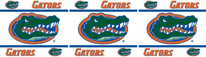 Related Pictures florida gators wallpaper 810x225