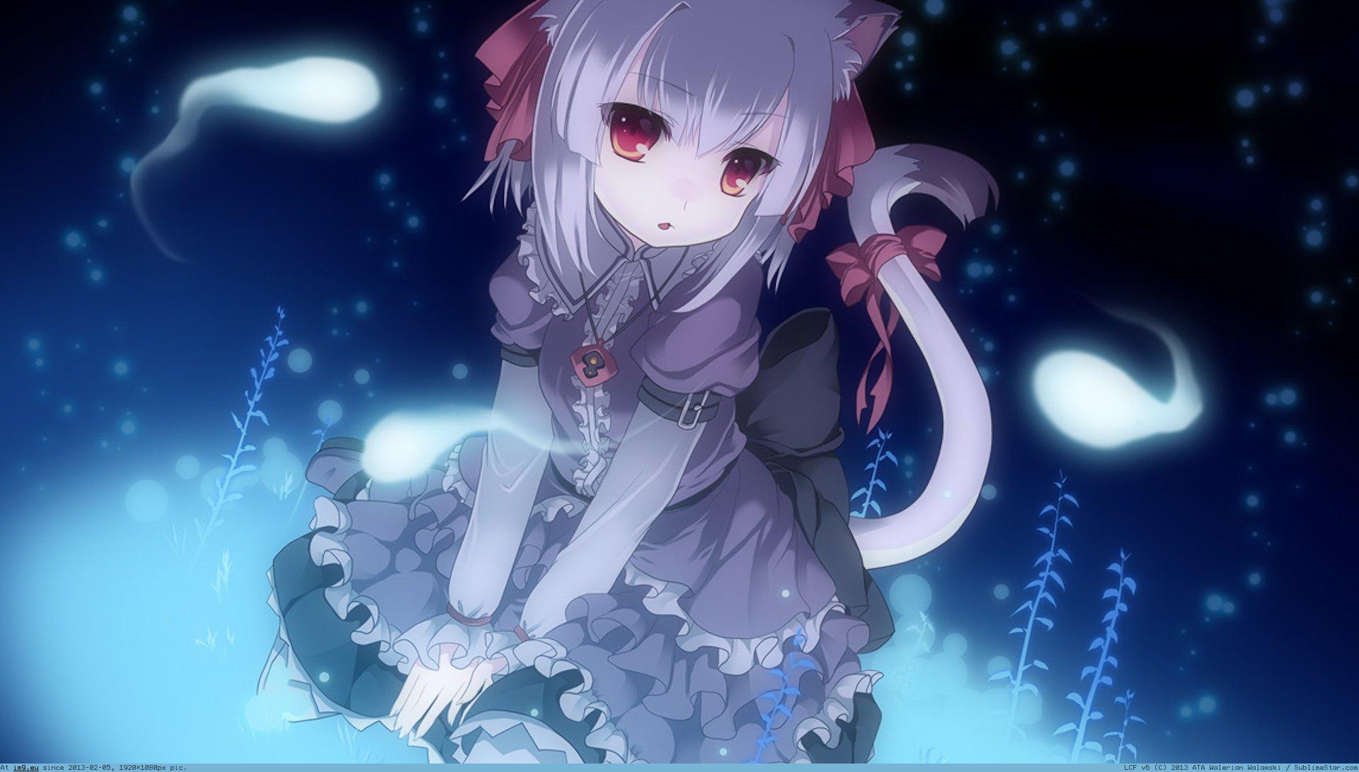 Catgirl wallpaper wallpapersafari - Anime cat wallpaper ...