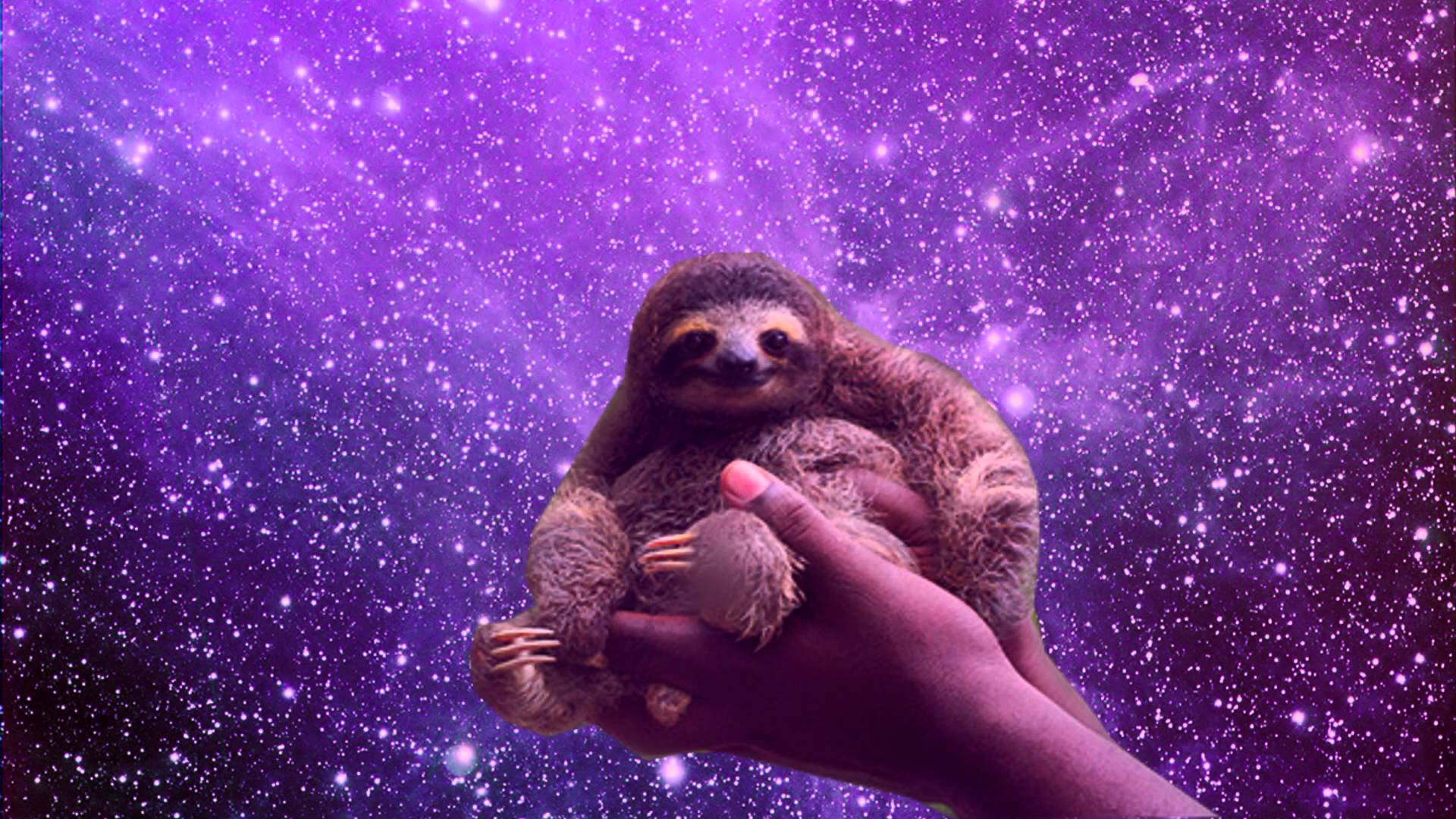 Sloths in Space 1920x1080