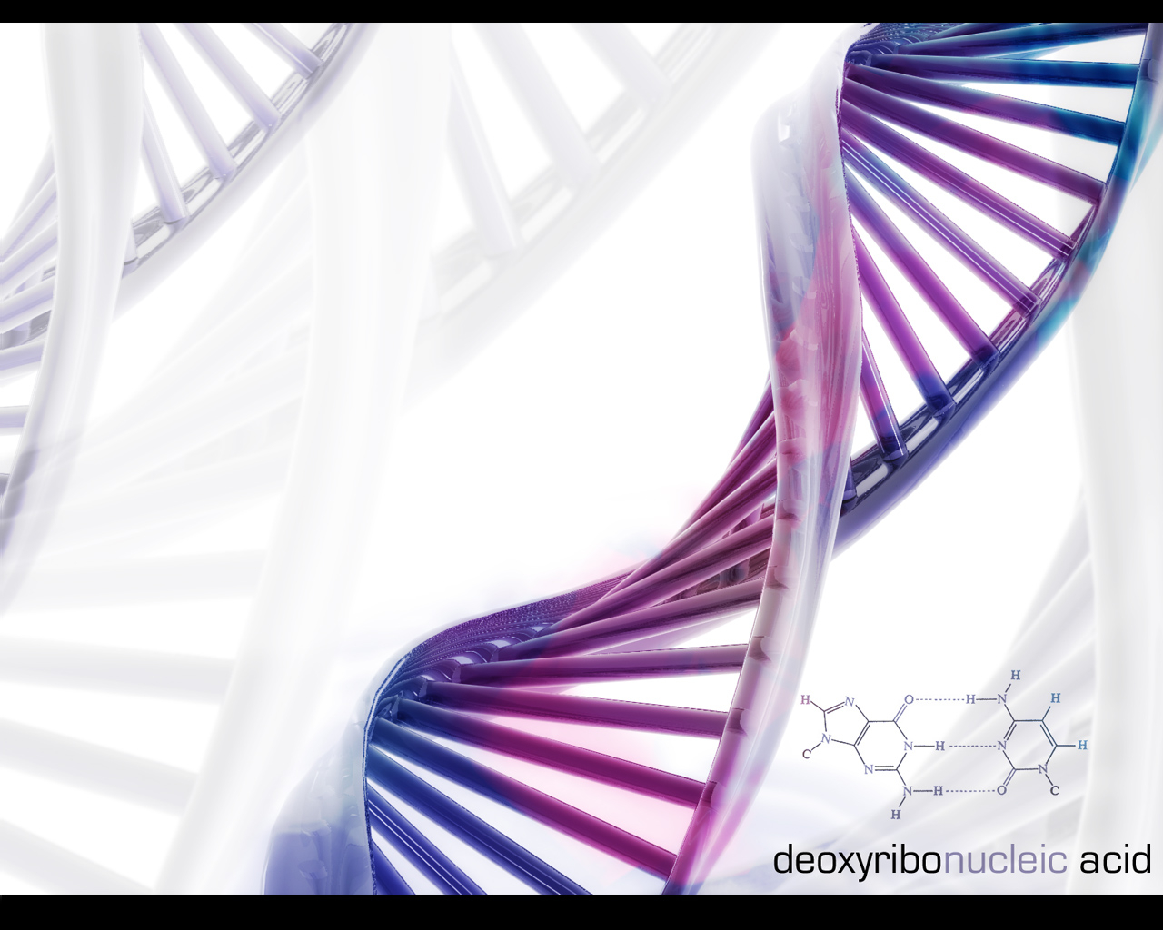 Download Dna Science Wallpaper 1280x1024 Full HD Wallpapers 1280x1024