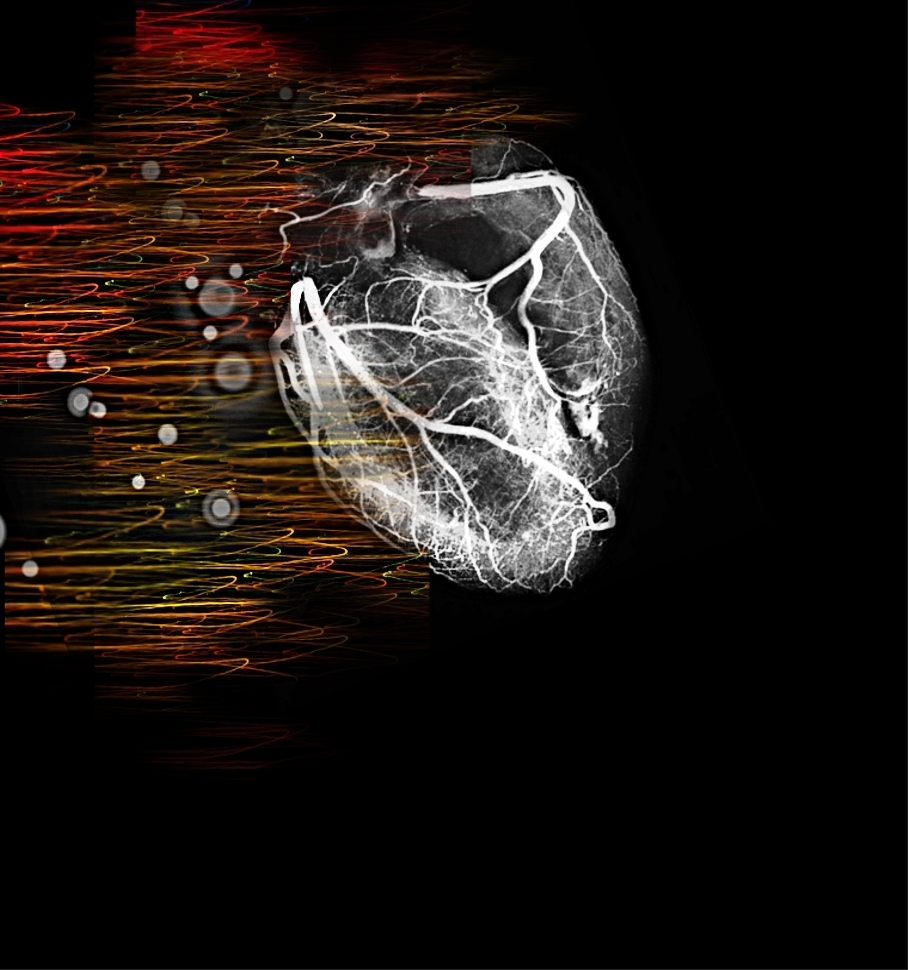 Cardiology Wallpaper 908x970