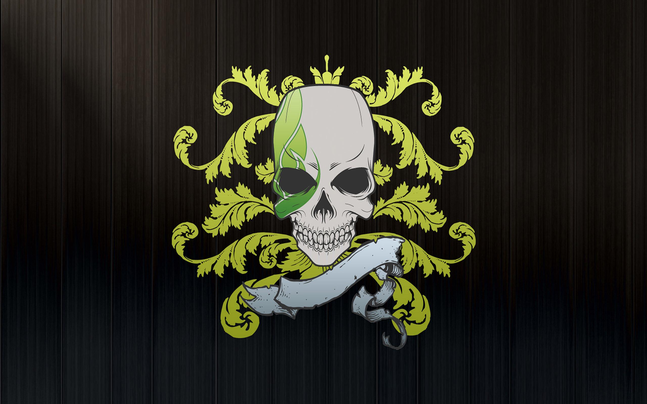 Skull Wallpapers Desktop Wallpapers 2560x1600