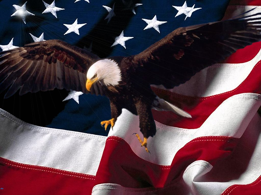 Pictures Blog Bald Eagle with American Flag Wallpaper 1024x768