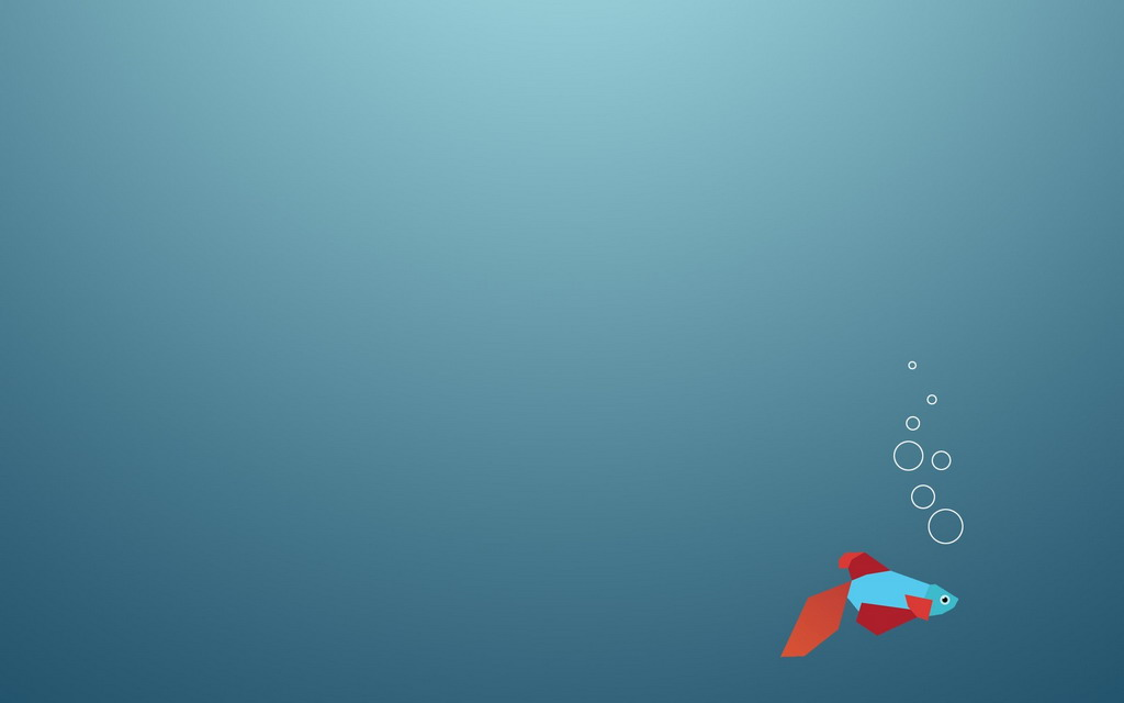 Windows 8 Stock Fish Wallpaper for Android   Android Live Wallpaper 1024x640