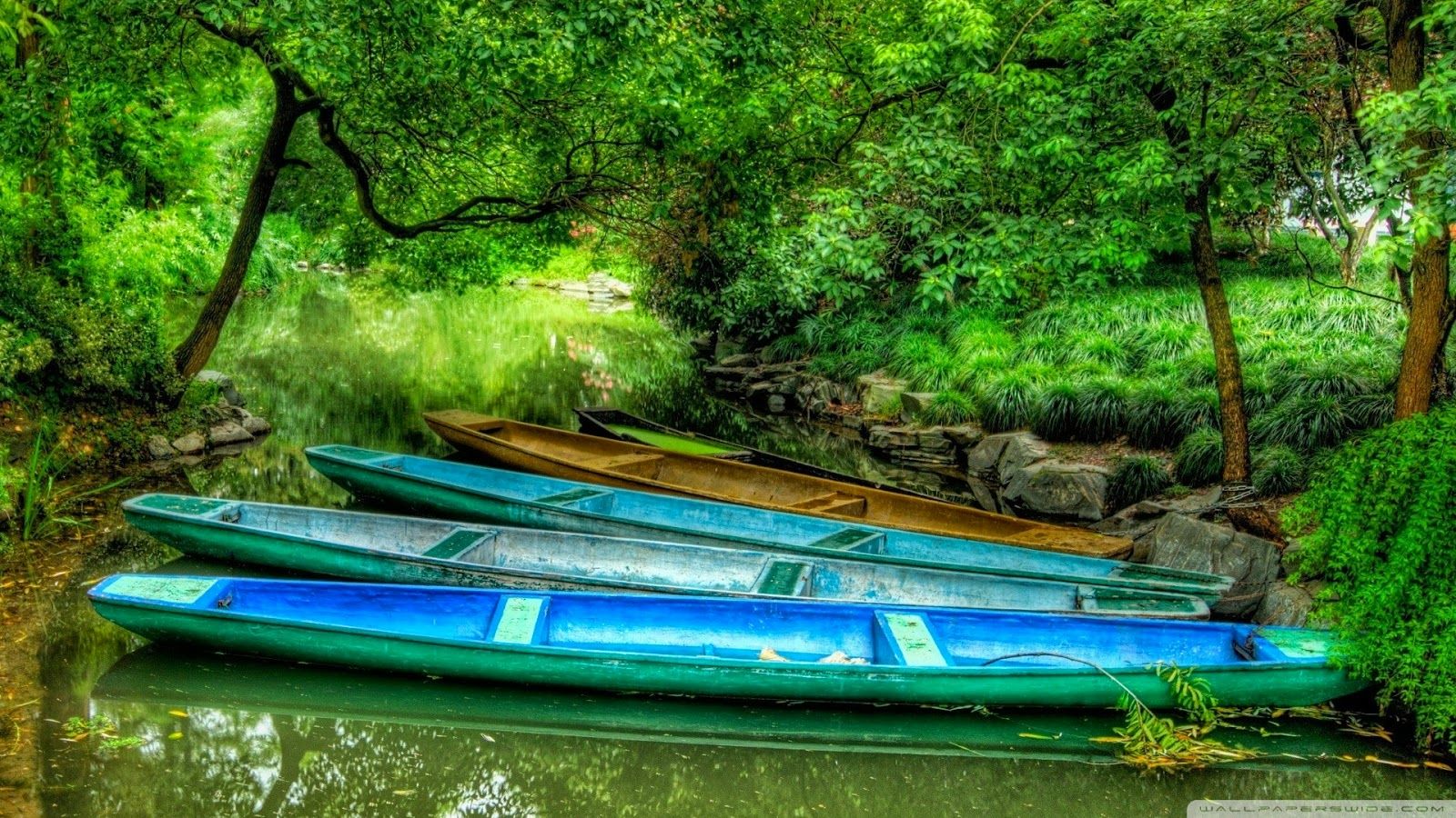 full hd nature photo download