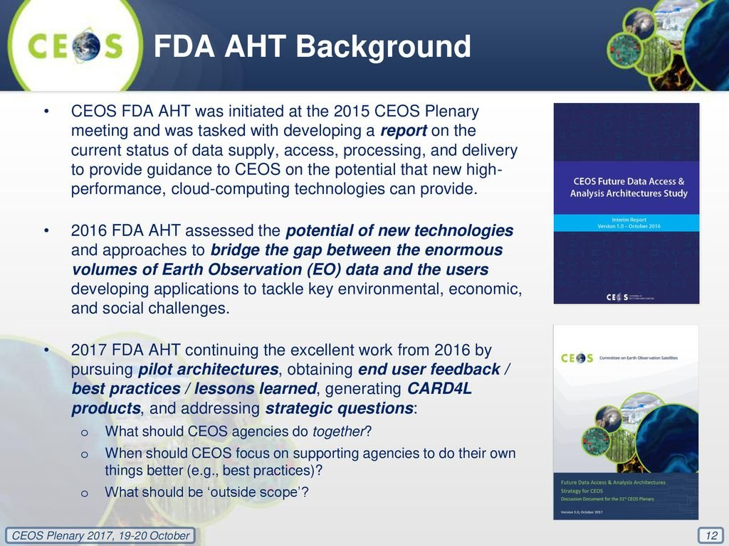 Future Data Access Analysis Architectures FDA Strategy   ppt 1024x768