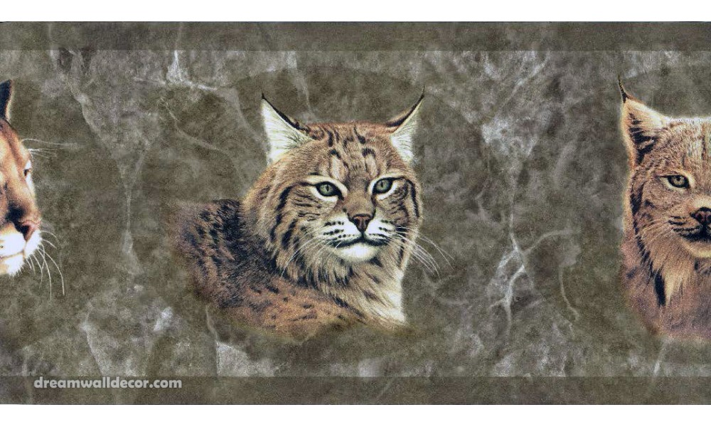 Brown Wild Cats Wallpaper Border 1000x600