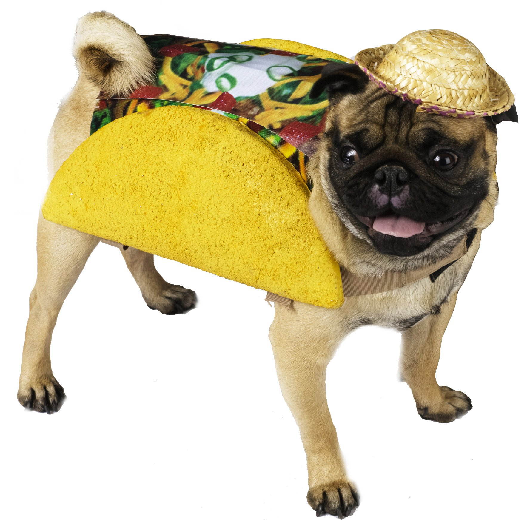 Taco Cat Versus Taco Pug Who Is The Better Taco 1776x1753
