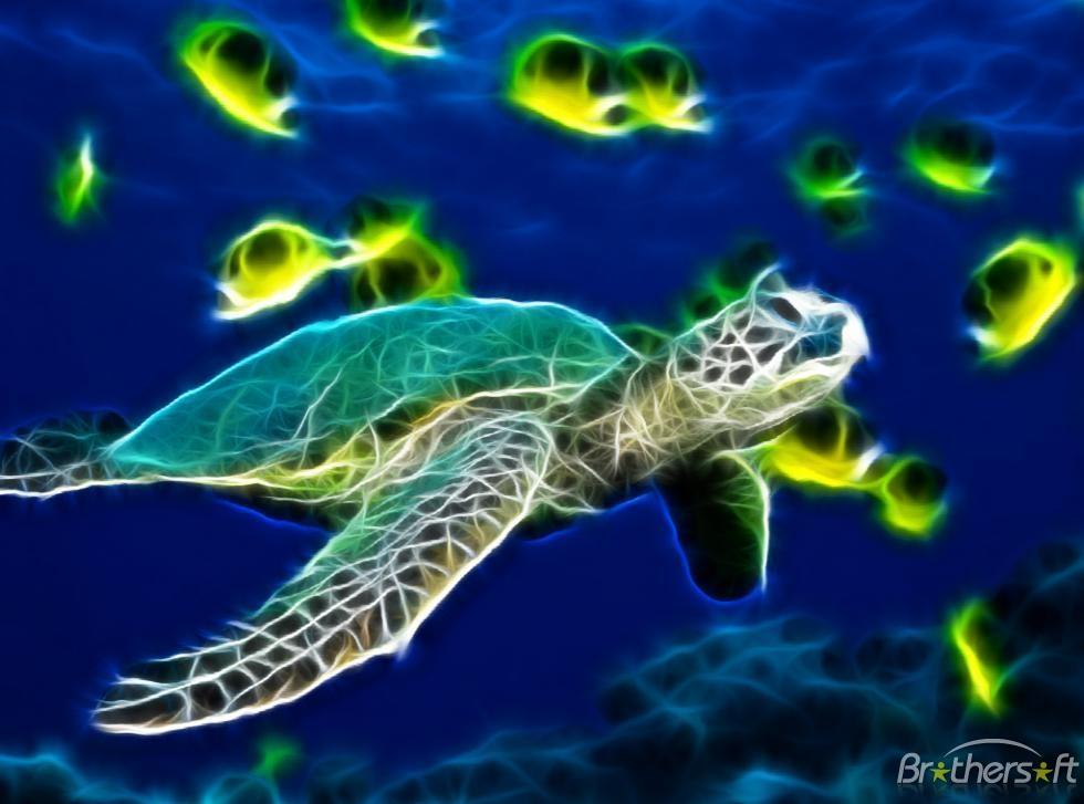 Sea Turtle Animated Wallpaper Sea Turtle Animated Wallpaper 980x727