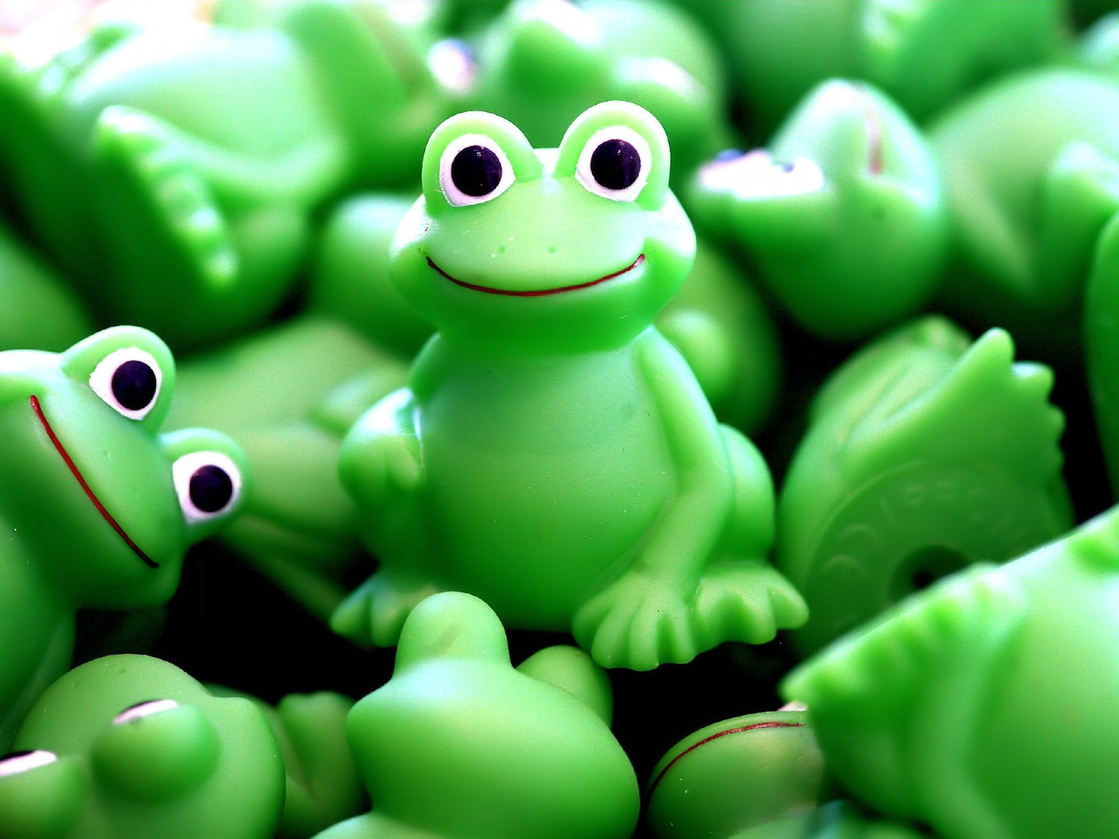 Crazy Frogs 1600 x 1200 Download Close 1600x1200