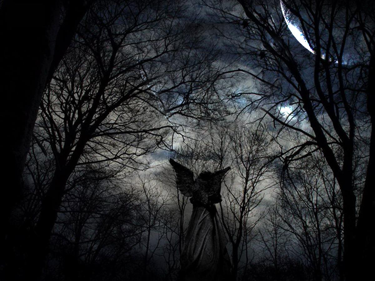 Fallen Angel 1200x900