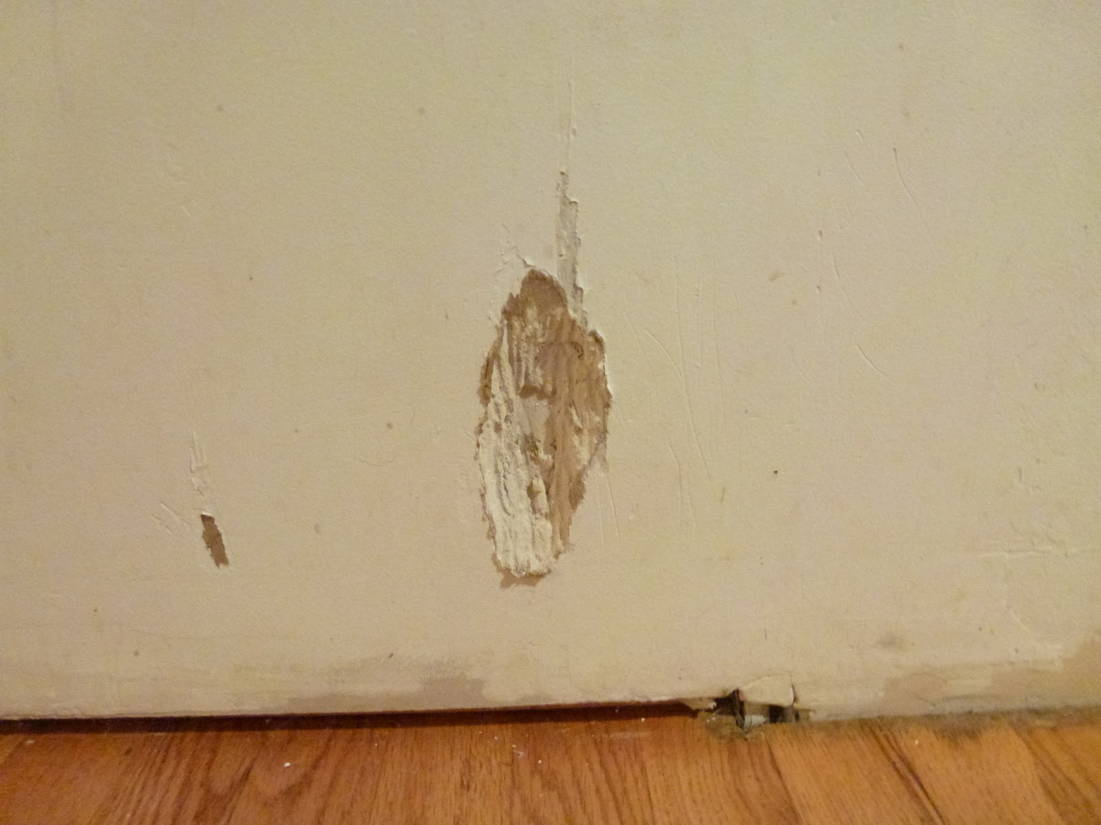 1600x1200px how to remove wallpaper glue from drywall