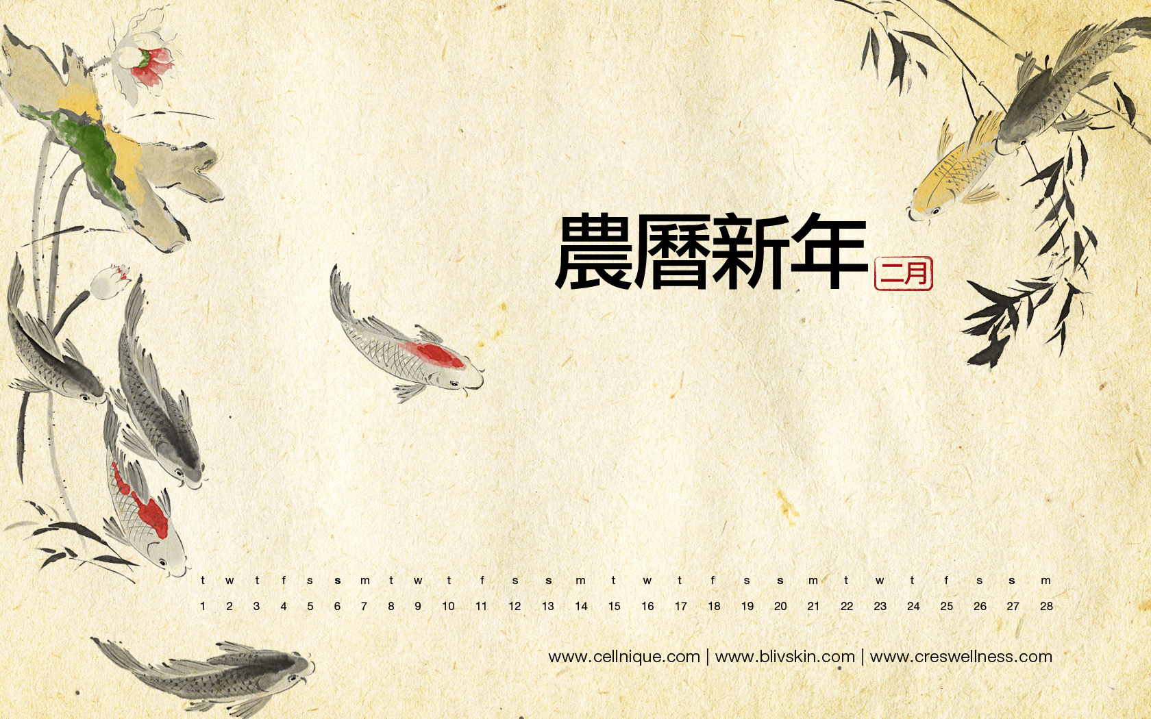 Chinese New Year Wallpaper 1680x1050