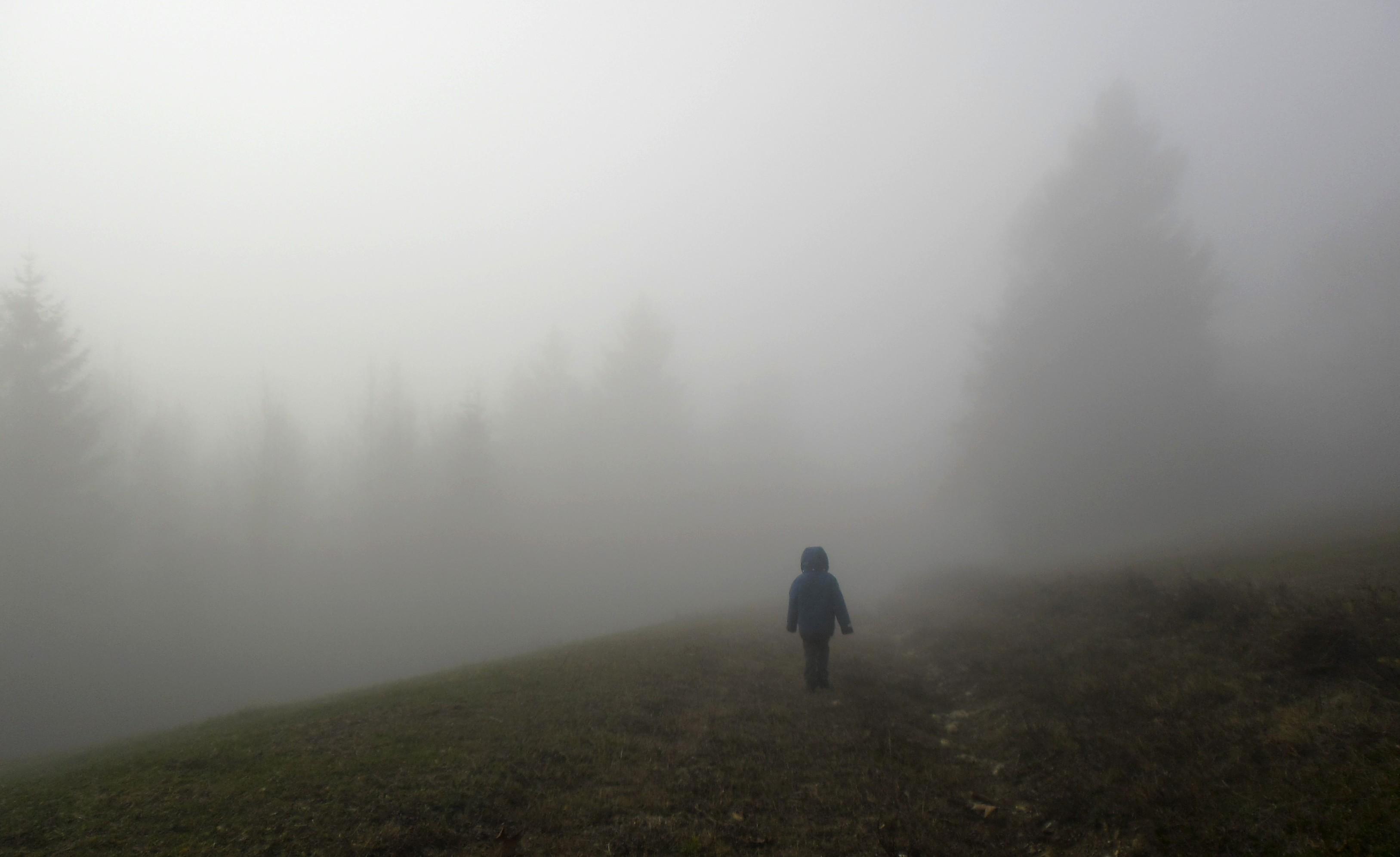 Into The Mist Wallpaper - WallpaperSafari