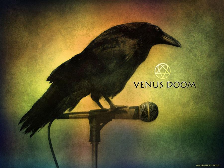 Dark Raven Wallpaper by praveen3d 900x675