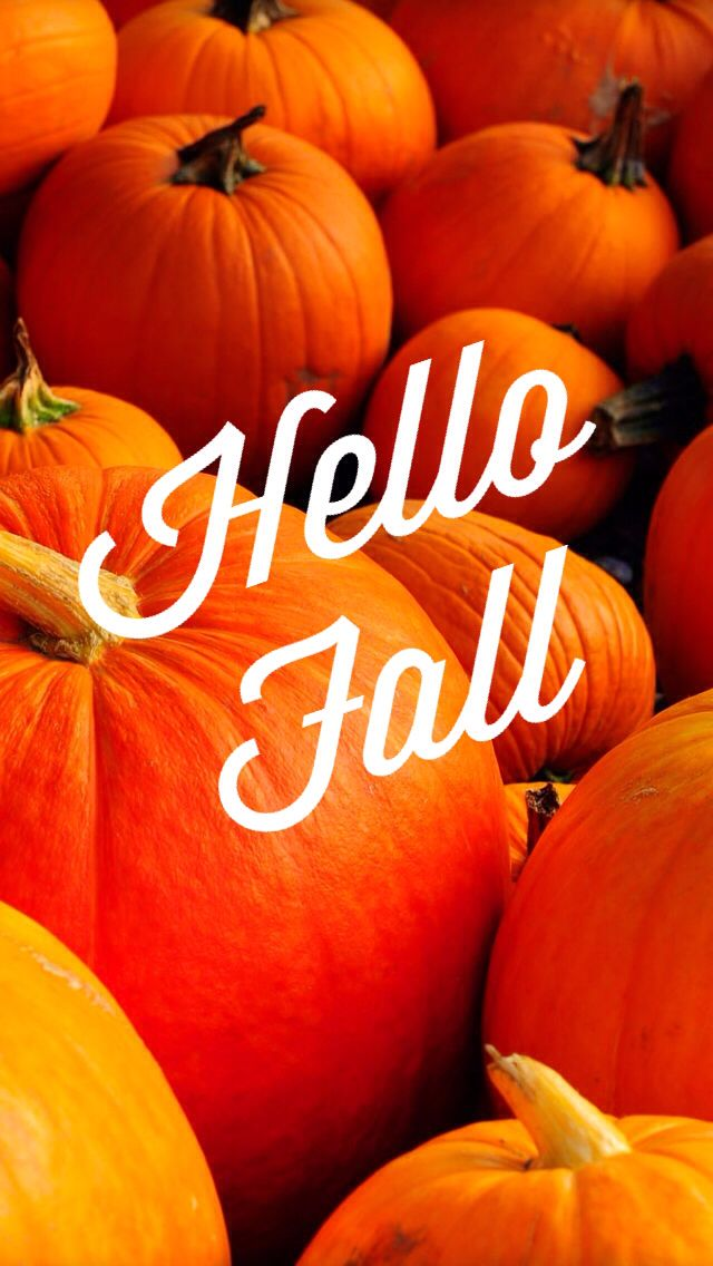 Iphone 6 fall wallpaper wallpapersafari - Fall wallpaper pumpkins ...