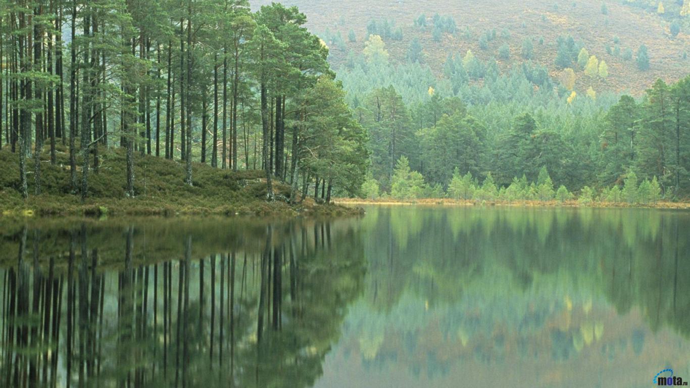 Download Wallpaper Loch Ness shore 1366 x 768 Desktop wallpapers 1366x768