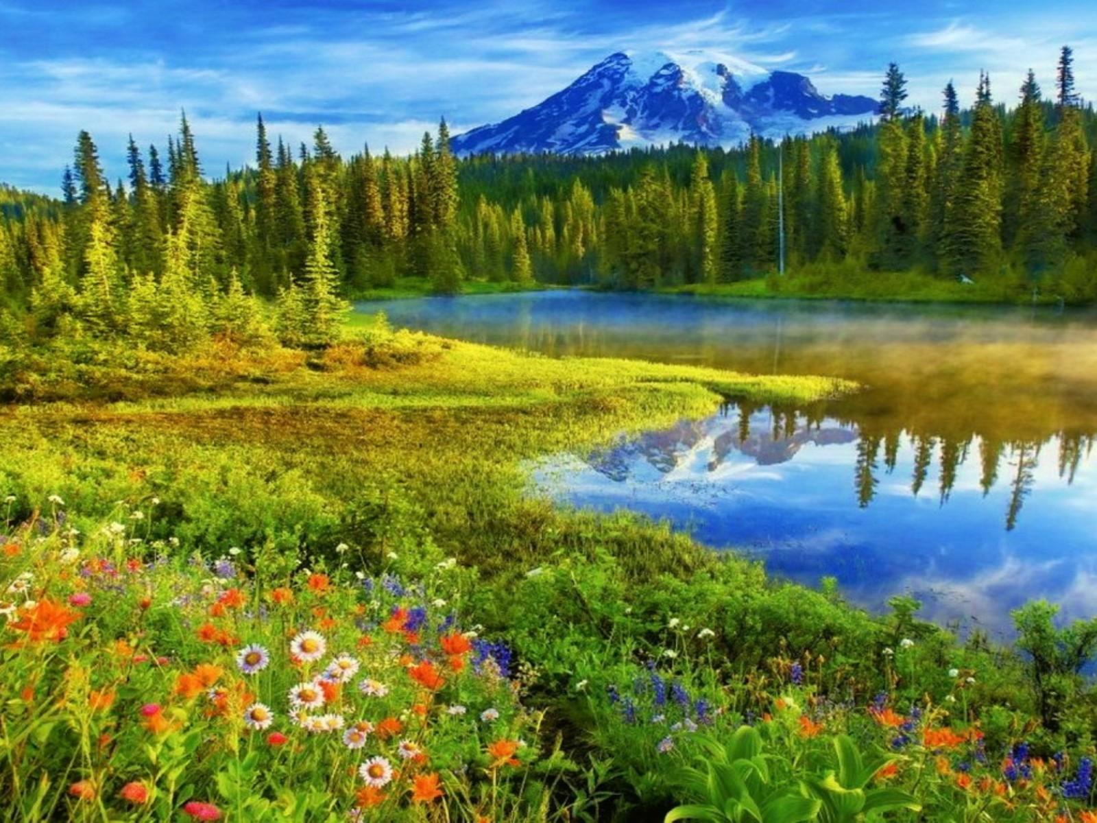 Mount Rainier HDwallpaperUP 1600x1200