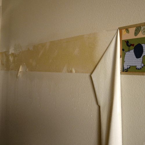 How To Get Rid Of Wallpaper How to Get Rid of Stuff 500x500