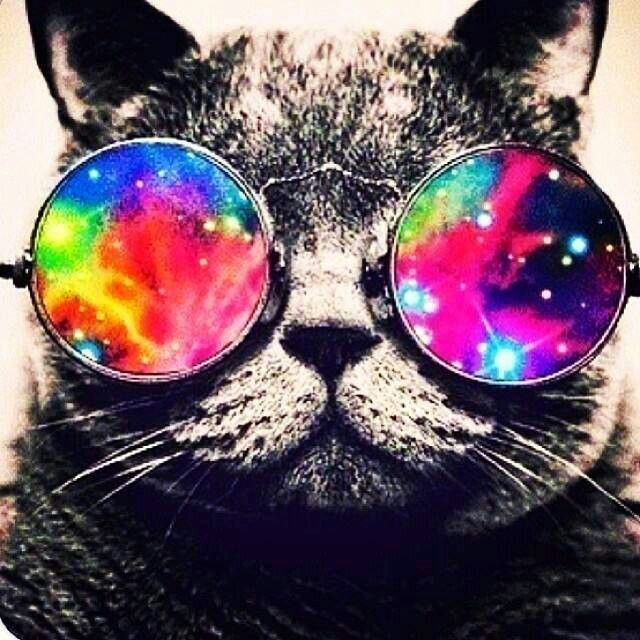 Cat with Galaxy Glasses 640x640