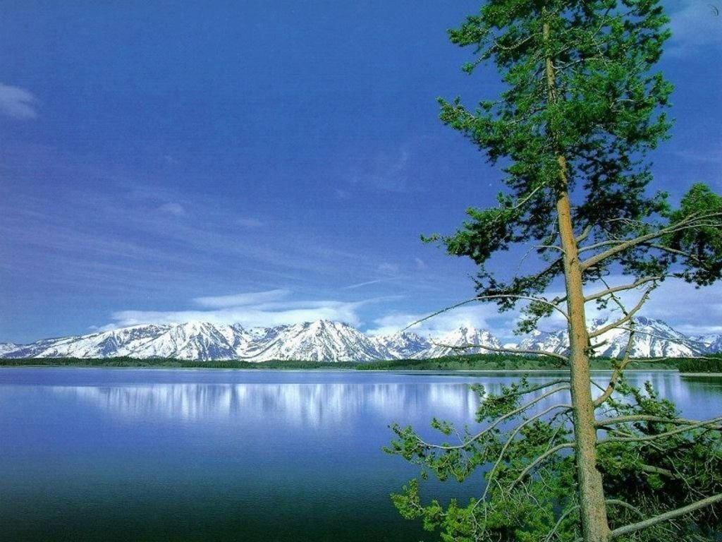 fabulous nature desktop wallpaper   wwwwallpapers in hdcom 1024x768