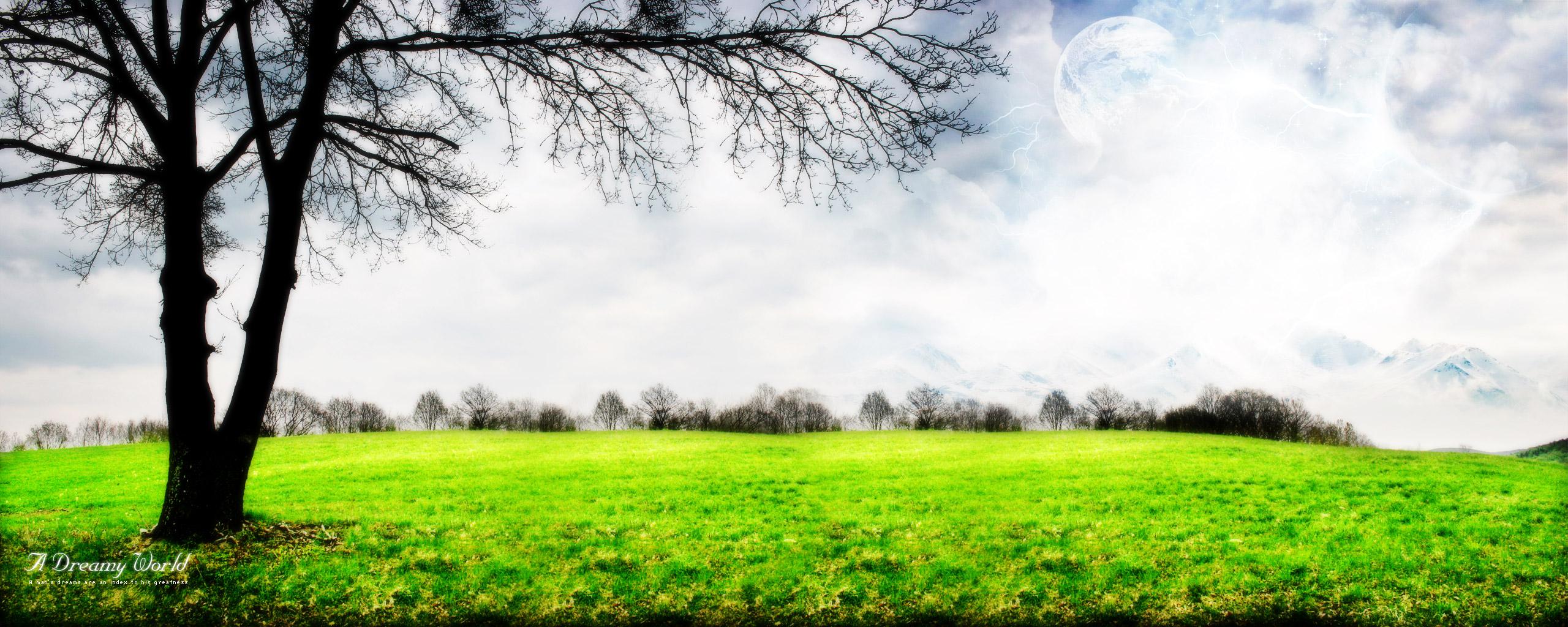 on A Grey Sky Wallpaper Green grass on A Grey Sky iPhone Wallpaper 2560x1024