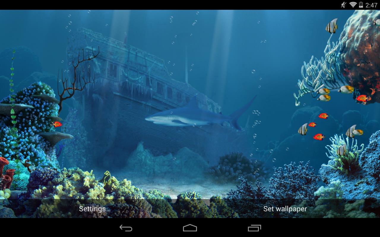 live shark wallpaper - photo #22