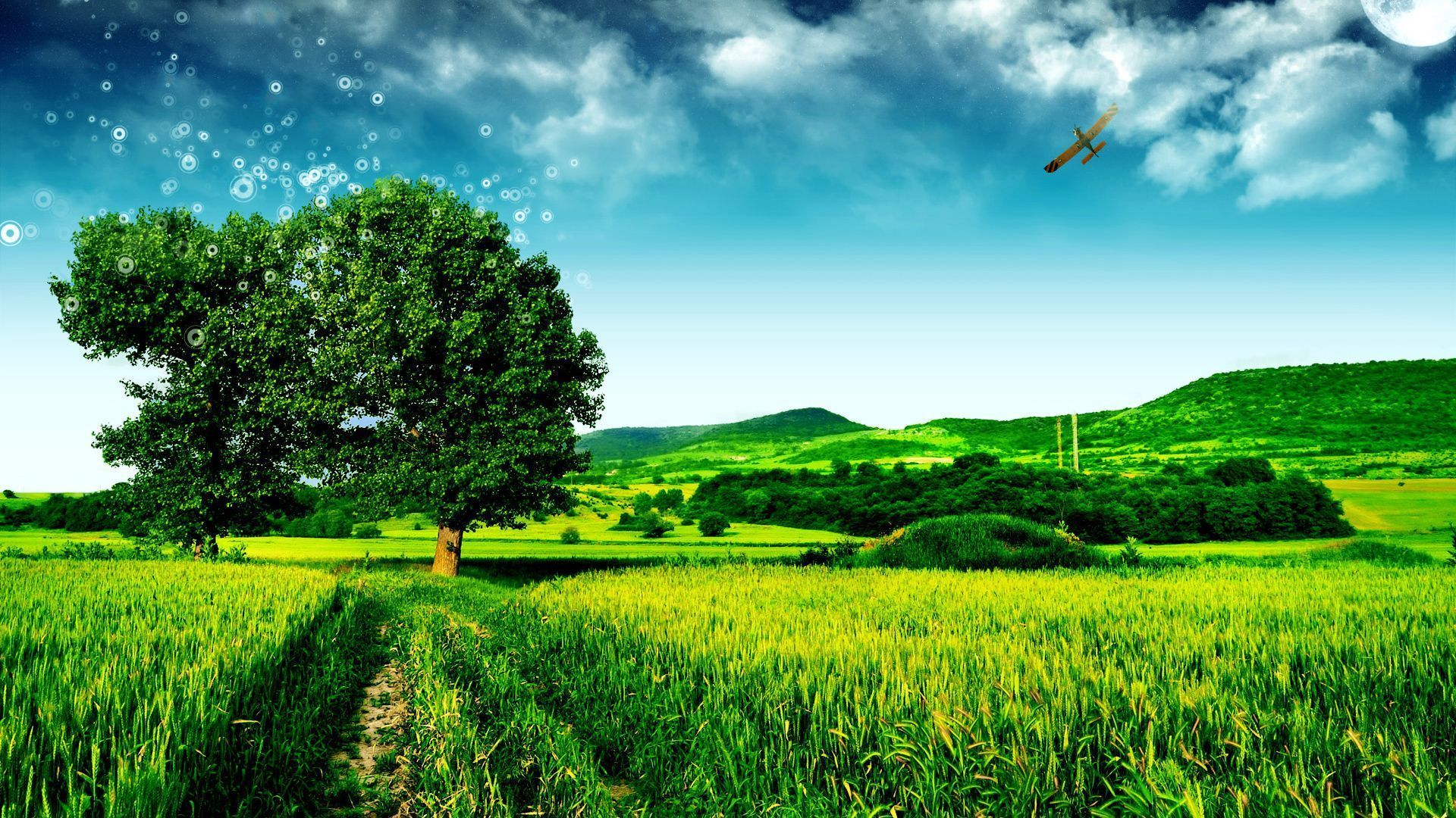 Beautiful Green Landscape Wallpaper Desktop 1920x1080