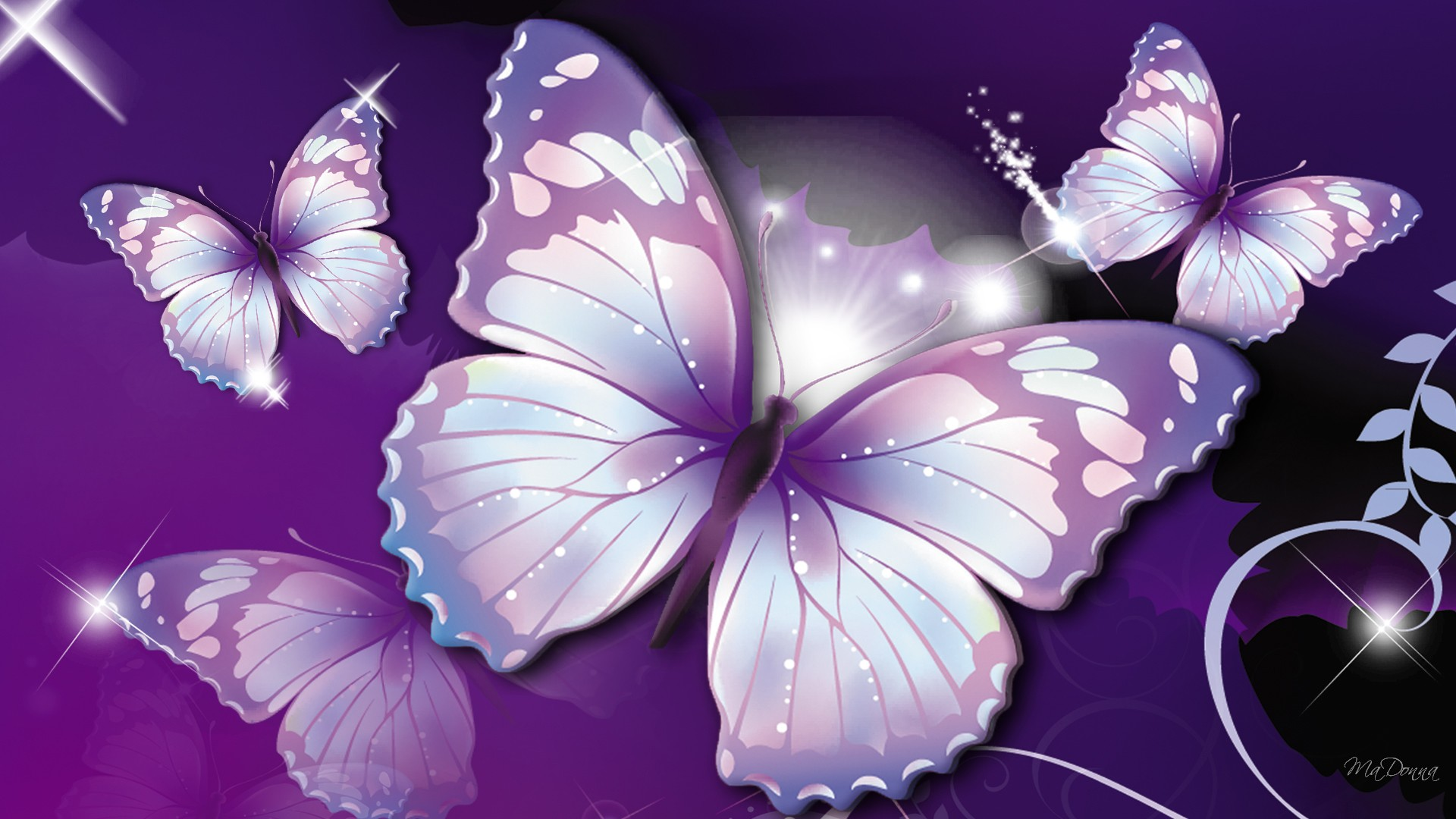 Cute Butterfly Wallpaper Desktop   Beautiful Butterfly Picture 1920x1080