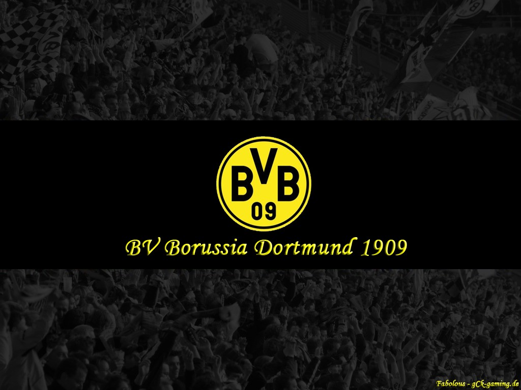 Borussia Dortmund Wallpaper HD 2013 4 Football 1024x768