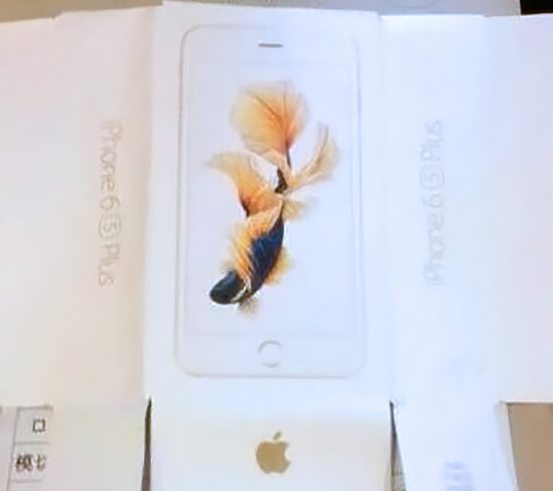 iphone6scarp 800x710