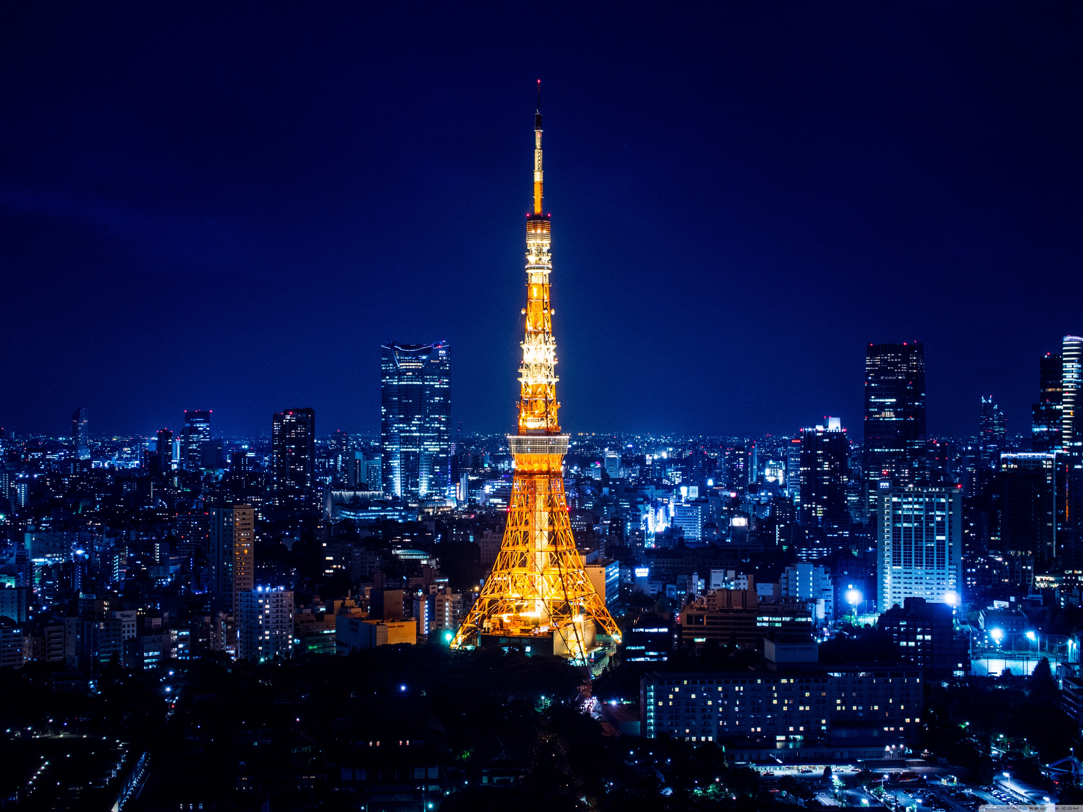city Lights Tokyo tower Big town wallpapers and images   wallpapers 4096x3072