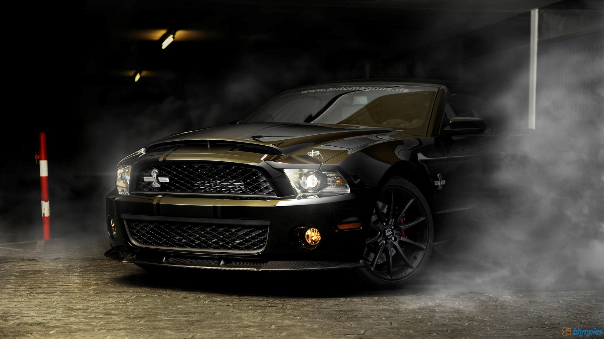 Shelby Mustang Gt500 Super Snake Wallpaper 1 1920x1080
