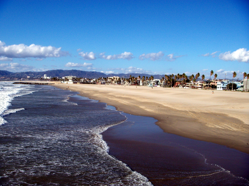 Venice Beach Pictures Gallery wallpapers   Hot HD Wallpapers 1024x768