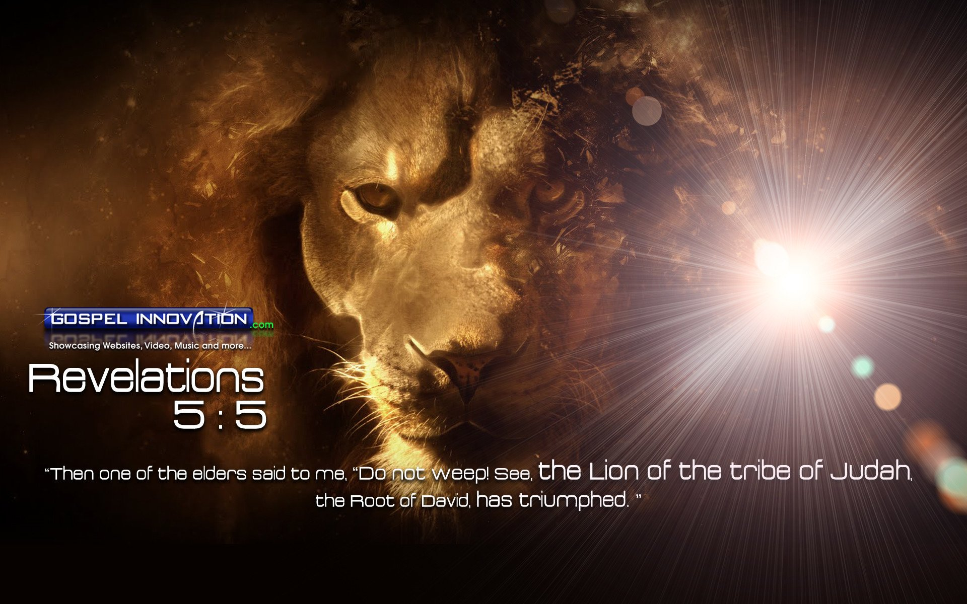 Lion of Judah Wallpapers 64 images 1920x1200