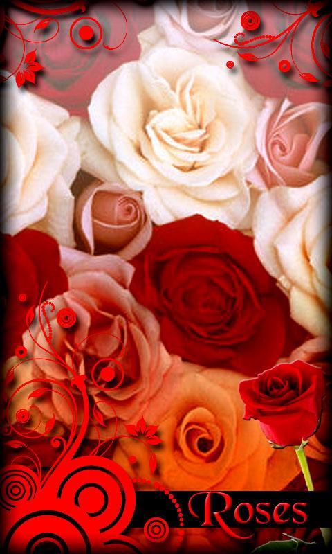 deskripsi roses live wallpaper adalah baru harus memiliki wallpaper 480x800