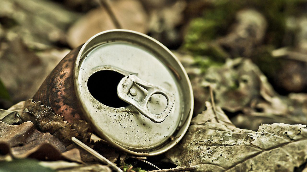 Wallpaper From Garbage Pics Bae Nature wallpaper Cool 1280x720